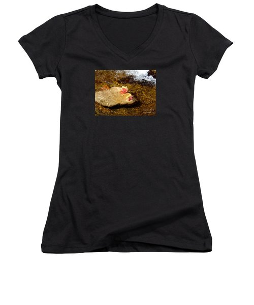 Fall Colors 6348 Women's V-Neck T-Shirt (Junior Cut) by En-Chuen Soo