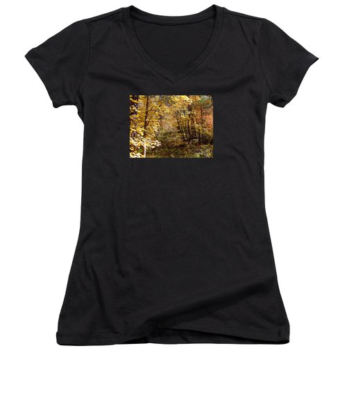 Fall Colors 6405 Women's V-Neck T-Shirt