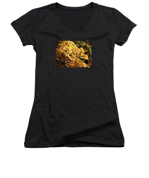 Fall Colors 6407 Women's V-Neck T-Shirt (Junior Cut) by En-Chuen Soo