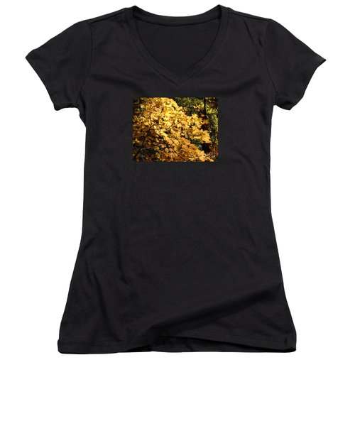 Fall Colors 6407 Women's V-Neck T-Shirt