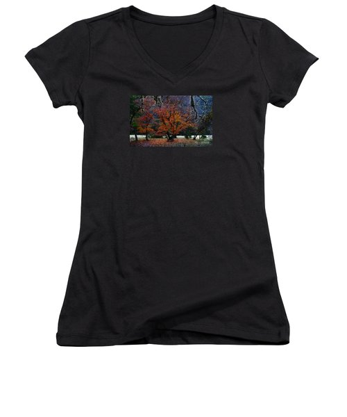 Fall Foliage At Lost Maples State Park  Women's V-Neck