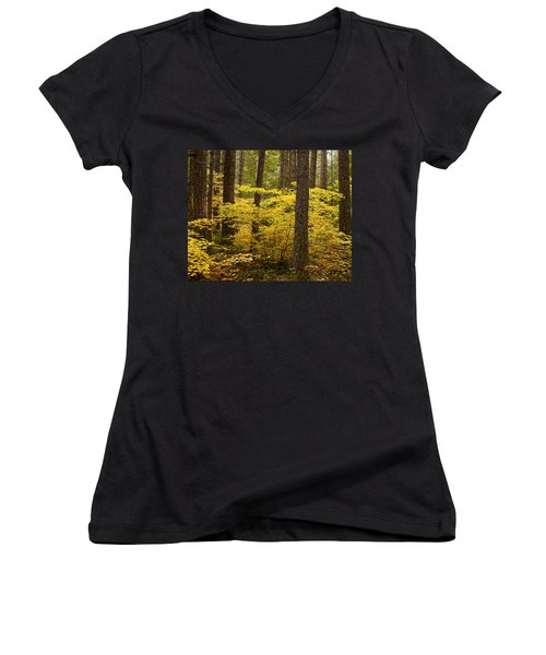 Women's V-Neck T-Shirt (Junior Cut) featuring the photograph Fall Foliage by Belinda Greb