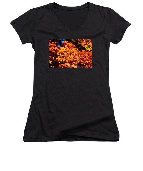 Fall Foliage Colors 16 Women's V-Neck