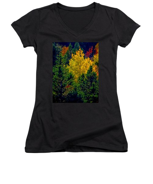 Fall Leaves Women's V-Neck T-Shirt (Junior Cut) by Bill Howard