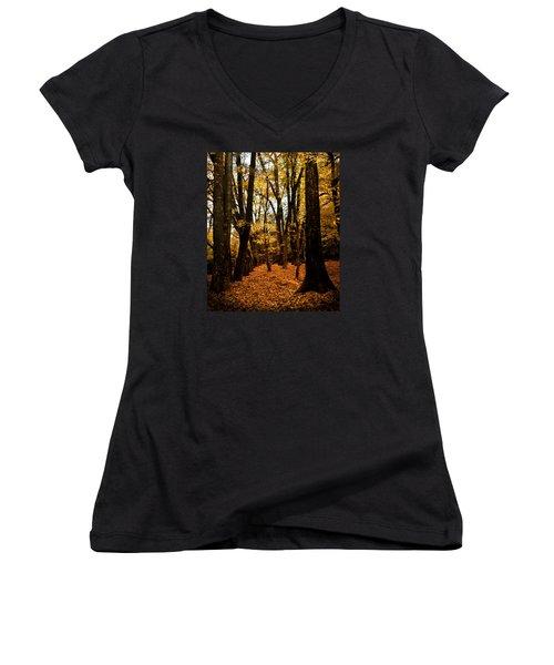 Fall Scene In Bidwell Park Women's V-Neck T-Shirt