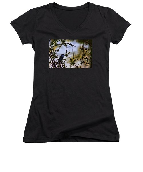 Fall Silhouette Women's V-Neck T-Shirt