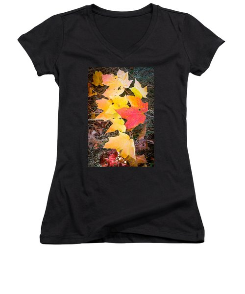 Fallen Leaves Women's V-Neck T-Shirt