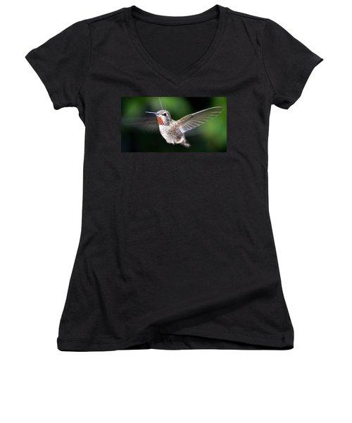 Women's V-Neck T-Shirt (Junior Cut) featuring the photograph Female Caliope Hummingbird In Flight by Jay Milo