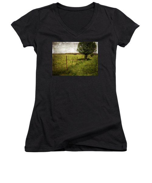 Fence With Tree Women's V-Neck (Athletic Fit)