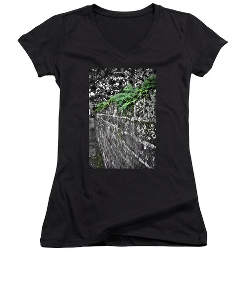 Ferns On Old Brick Wall Women's V-Neck T-Shirt