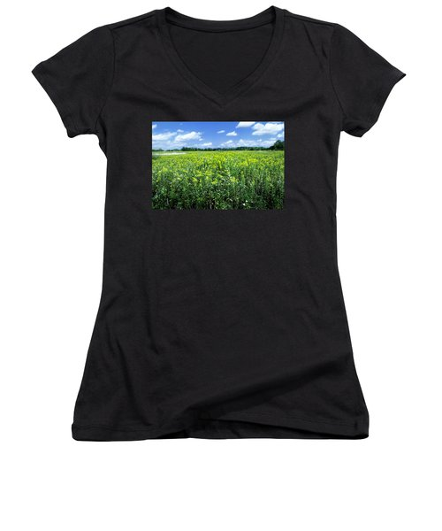 Field Of Flowers Sky Of Clouds Women's V-Neck (Athletic Fit)