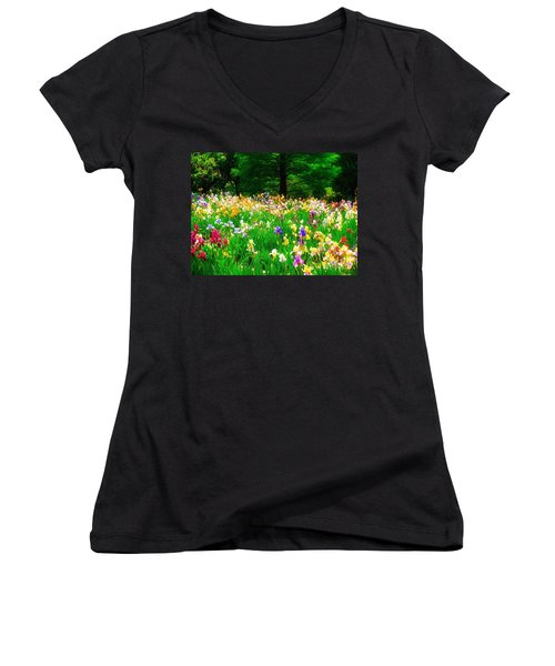 Field Of Iris Women's V-Neck T-Shirt