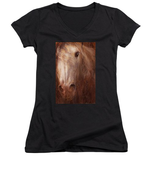 Fire And Ice Women's V-Neck T-Shirt (Junior Cut) by Melinda Hughes-Berland