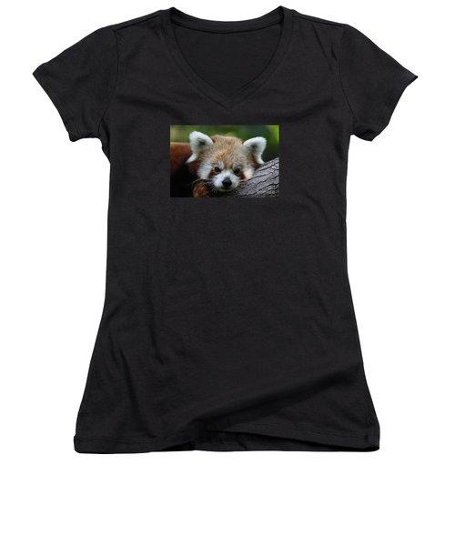 Women's V-Neck T-Shirt (Junior Cut) featuring the photograph Fire Fox by Judy Whitton