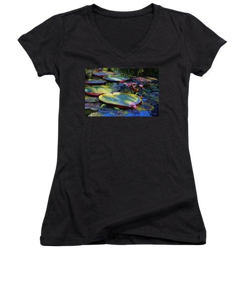First Morning Light Women's V-Neck T-Shirt (Junior Cut) by John Lautermilch