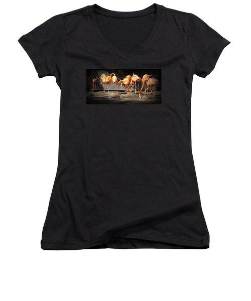 Flamingo Hangout Women's V-Neck T-Shirt