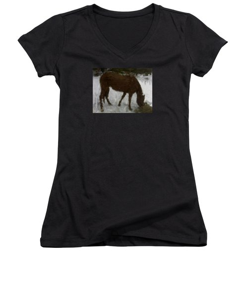 Women's V-Neck T-Shirt (Junior Cut) featuring the painting Flicka by Bruce Nutting