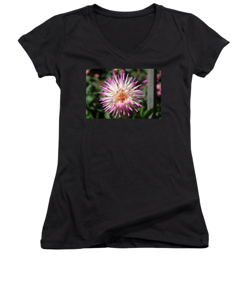Floral Beauty 3  Women's V-Neck