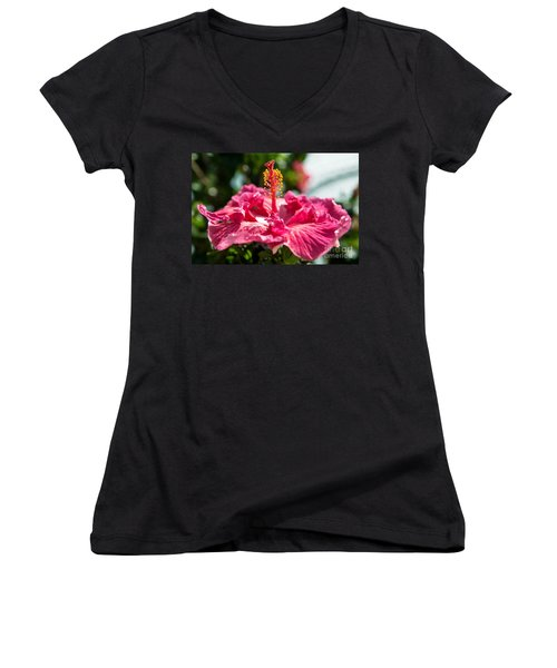Flower Closeup Women's V-Neck