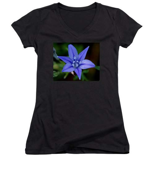 Flower From Paradise Lost Women's V-Neck (Athletic Fit)
