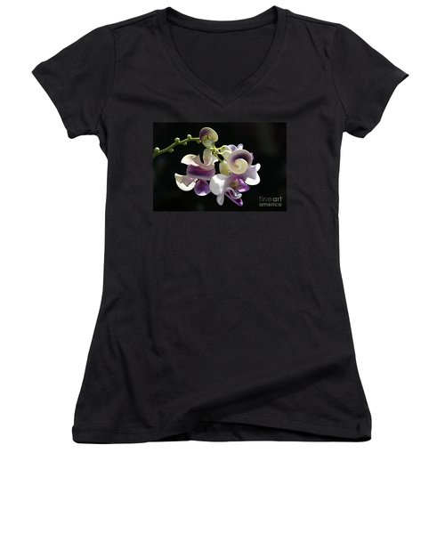 Flower-snail Flower Women's V-Neck T-Shirt