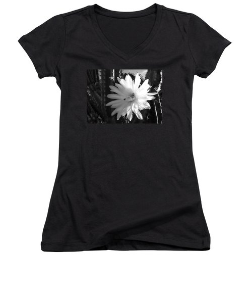 Flowering Cactus 1 Bw Women's V-Neck T-Shirt (Junior Cut) by Mariusz Kula