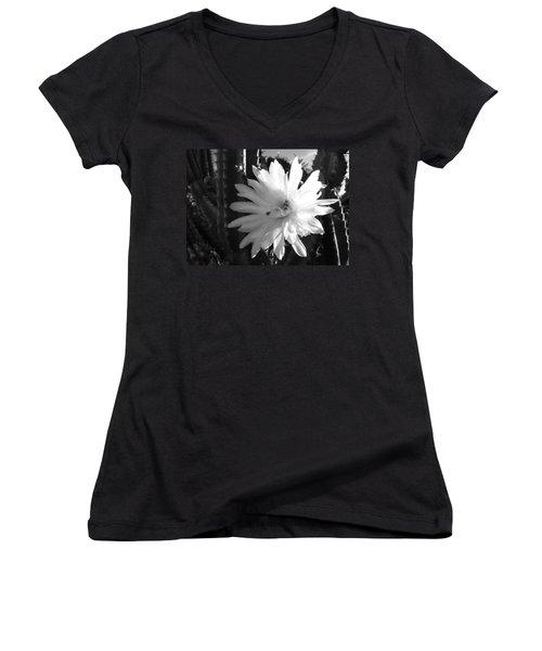 Flowering Cactus 1 Bw Women's V-Neck