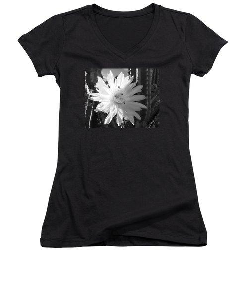 Women's V-Neck T-Shirt (Junior Cut) featuring the photograph Flowering Cactus 5 Bw by Mariusz Kula