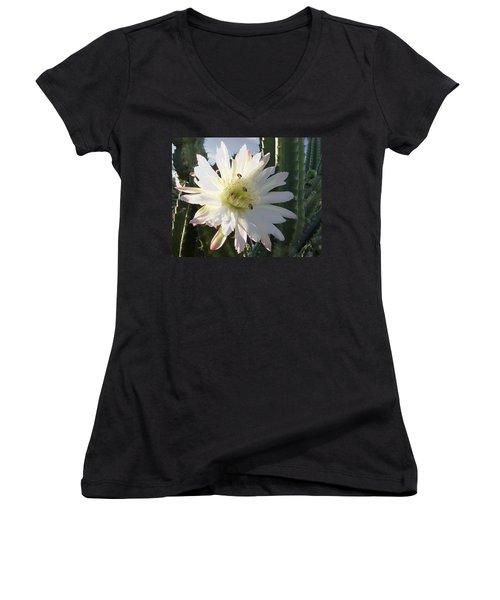 Women's V-Neck T-Shirt (Junior Cut) featuring the photograph Flowering Cactus 5 by Mariusz Kula