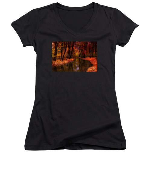 Flowing Through The Colors Of Fall Women's V-Neck T-Shirt