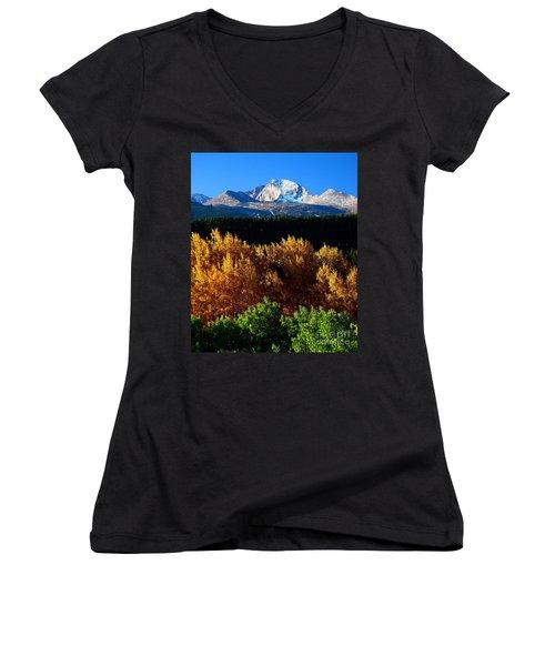 Four Seasons Women's V-Neck T-Shirt (Junior Cut) by Steven Reed