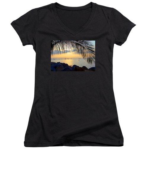 Framed By Fronds Women's V-Neck T-Shirt