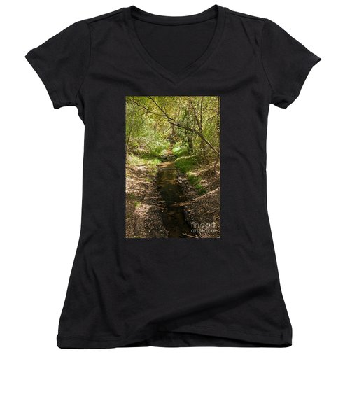 Frijole Creek Bandelier National Monument Women's V-Neck (Athletic Fit)