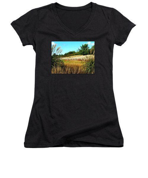 Furry Hill Women's V-Neck T-Shirt (Junior Cut) by Tim Fillingim