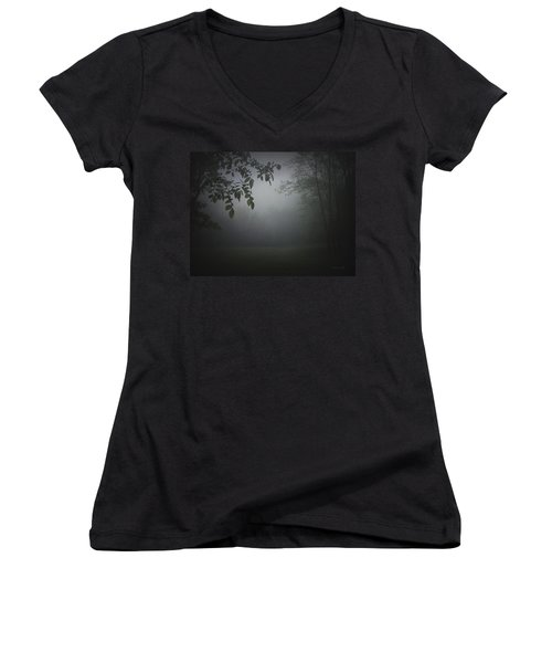 Gaia Cathedral Women's V-Neck T-Shirt (Junior Cut) by Cynthia Lassiter