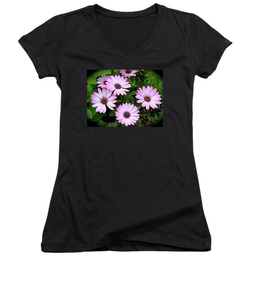 Garden Beauty Women's V-Neck T-Shirt (Junior Cut) by Ed  Riche
