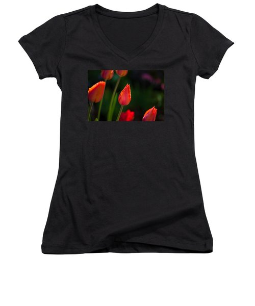 Garden Tulips Women's V-Neck