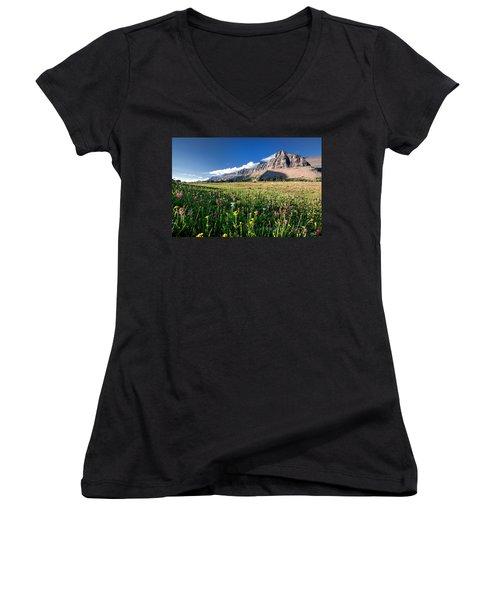 Garden Wall At Dusk Women's V-Neck T-Shirt (Junior Cut) by Aaron Aldrich