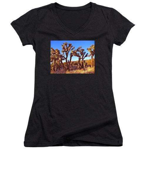 Gathering Women's V-Neck T-Shirt (Junior Cut) by Gem S Visionary
