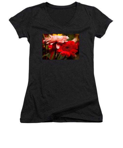 Gerbera Daisies Women's V-Neck T-Shirt (Junior Cut) by Patrice Zinck