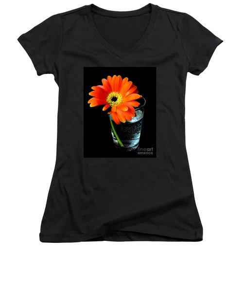 Women's V-Neck T-Shirt (Junior Cut) featuring the photograph Gerbera Daisy In Glass Of Water by Nina Ficur Feenan