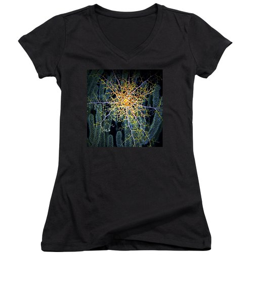 Giant Basket Star At Night Women's V-Neck T-Shirt (Junior Cut) by Amy McDaniel