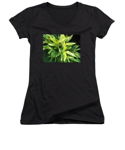 Ginger Lily. Alpinia Zerumbet Women's V-Neck T-Shirt (Junior Cut) by Connie Fox