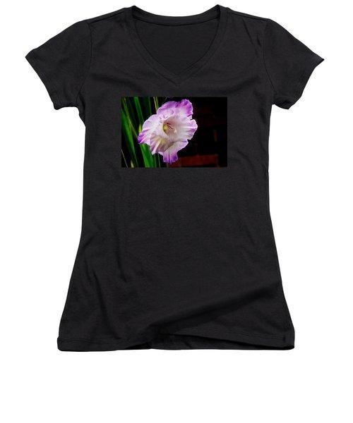 Gladiolus - Summer Beauty Women's V-Neck T-Shirt