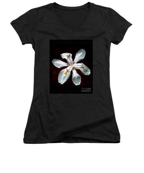 Glisten Women's V-Neck T-Shirt