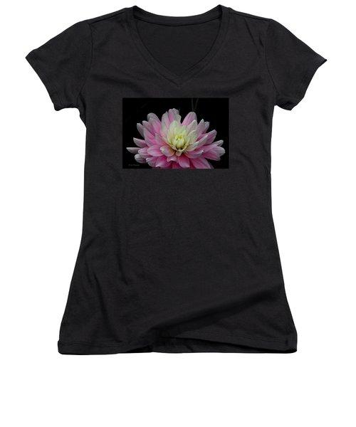 Glistening Dahlia Radiance Women's V-Neck T-Shirt (Junior Cut) by Jeanette C Landstrom