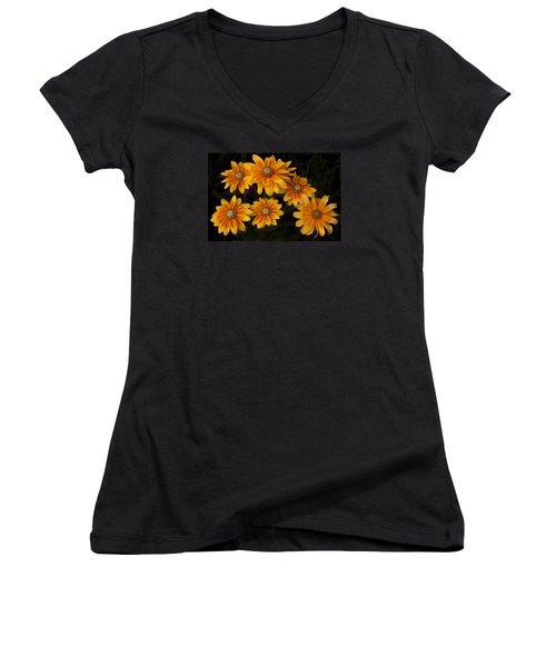 Gloriosa Women's V-Neck T-Shirt (Junior Cut) by Morris  McClung