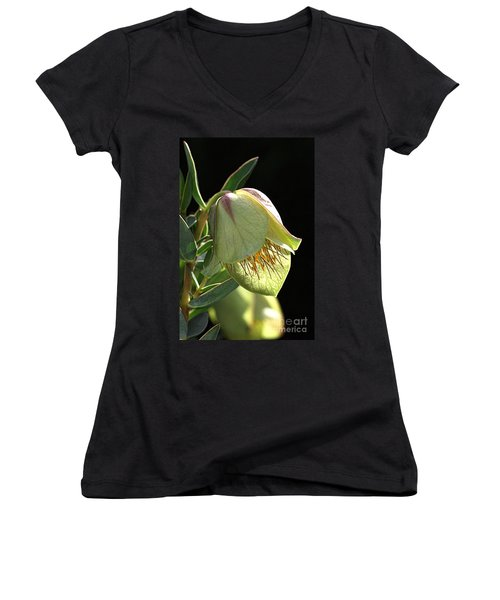 Glow Of The Bell Women's V-Neck