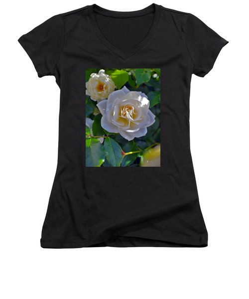 Glowing Iceberg  Women's V-Neck T-Shirt (Junior Cut) by Mayhem Mediums