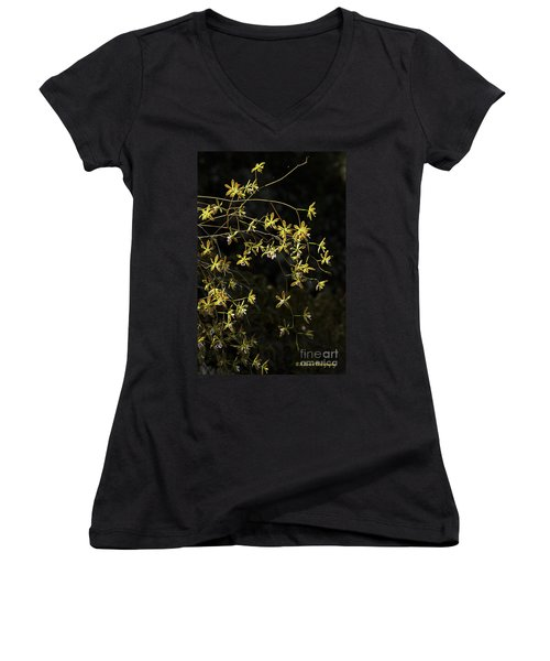 Glowing Orchids Women's V-Neck